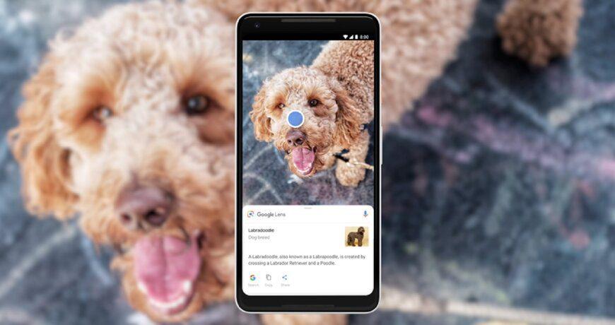 cómo identificar objetos y capturas usando Google Lens trucos